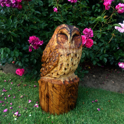 Tawny Owl Sleeping Chainsaw Sculpture