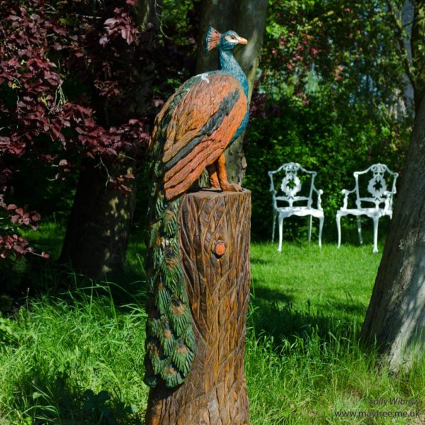 Peacock scuplture