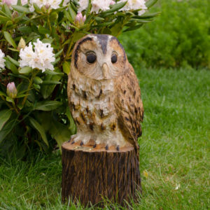 Tawny Owl Chainsaw Carving